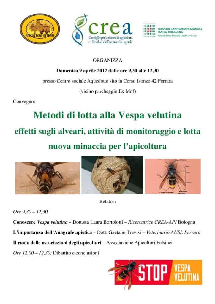 170409-ApicoltoriEstensi-VespaVelutina