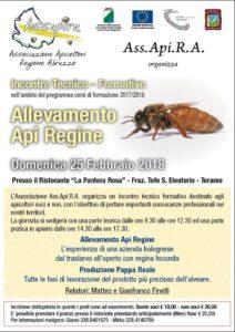 180225-ASSAPIRA-ApiRegine
